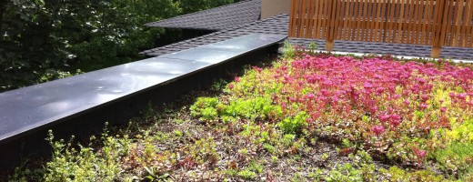 green roof with dents